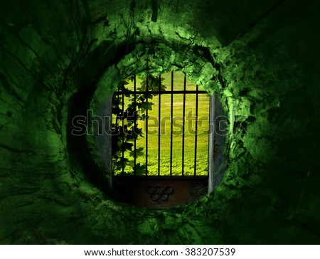 Green tunnel and gates to the secret garden - stock photo