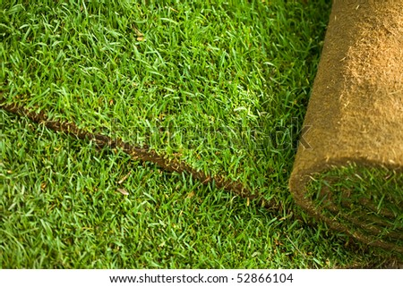 Green turf grass roll closeup and background - stock photo