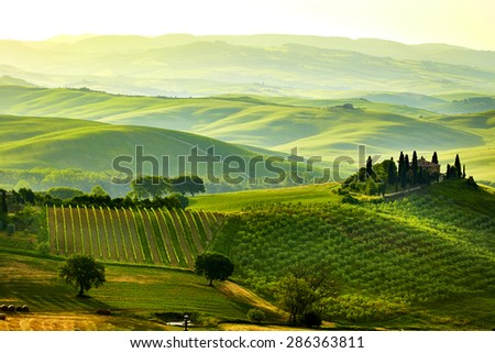Green Tuscany hills - stock photo