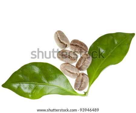green unroasted coffee grains and leaves of coffee trees surface top view close up  isolated on white - stock photo