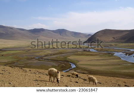 green valley at karakorum mongolia