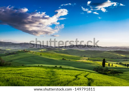 Green valley at sunset in Tuscany
