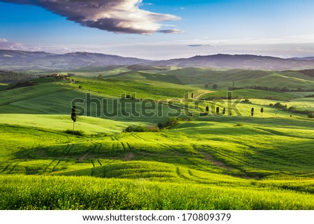 Green valley at sunset in Tuscany - stock photo