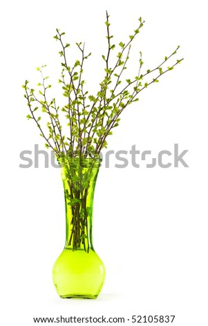 Green vase with spring branches isolated on white background