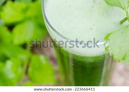 green vegetable juice with fresh celery, Healthy drink - stock photo