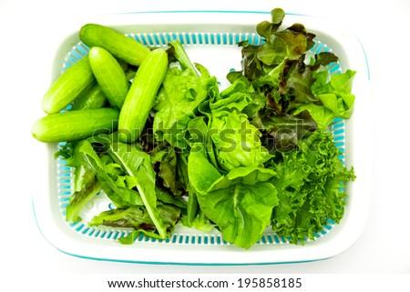 green vegetable on white background - stock photo