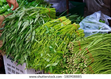 Green vegetables and dark leafy food background as a healthy eating concept - stock photo