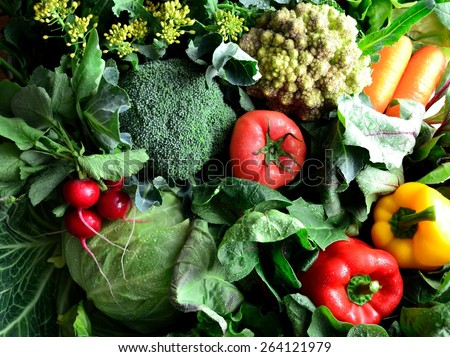 Green vegetables with colorful vegetables - stock photo
