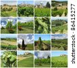 green vineyards in tuscan countryside, Italy,Europe - stock photo