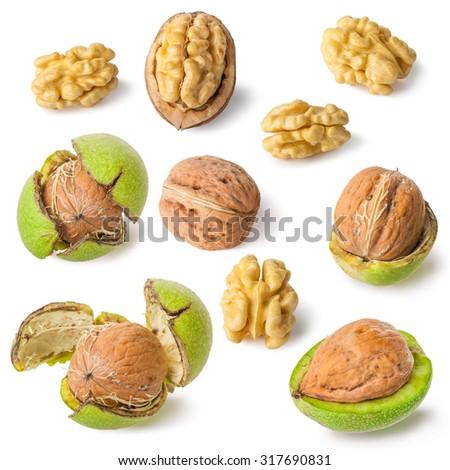 Green walnut, peeled walnut and its kernels. Isolated on a white background. - stock photo