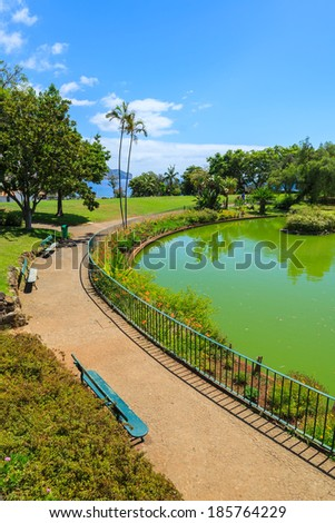 Green water lake in Santa Catarina tropical city park gardens of Funchal, Madeira island, Portugal  - stock photo