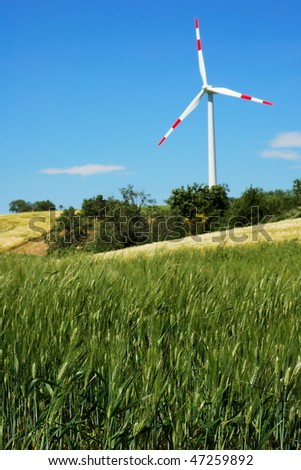 Green wheat field with wind turbine in background (selective focus on wheat in foreground)