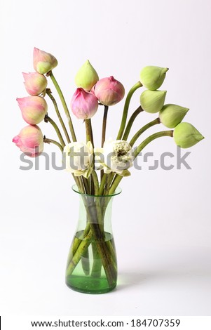 Green white and pink lotus flower in glass green vase - stock photo