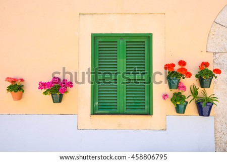 Green window shutters with a wall with blooming flowers