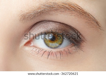 Green woman eye beauty with light brown make up, nude colors - stock photo