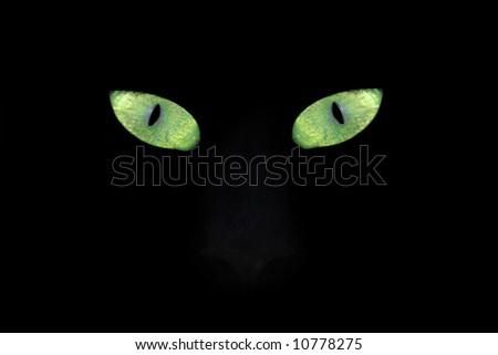 Green yellow Cat eyes - stock photo