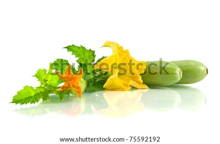 Green zucchini leaves and flower isolated on white - stock photo