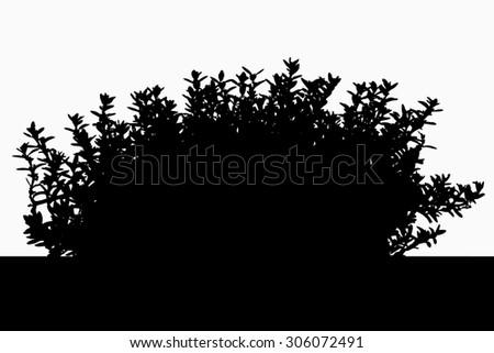 hebe stock images royalty free images vectors shutterstock. Black Bedroom Furniture Sets. Home Design Ideas