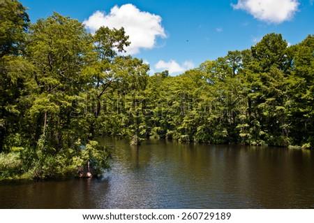 Greenfield Lake Park in Wilmington north carolina, usa.  beautiful blue sky, lush trees surrounding water - stock photo