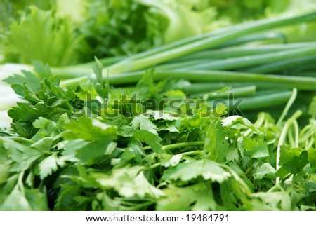 greengrocery assortment with parsley, spring onions, salad leaves - stock photo