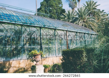 Greenhouse in botanical garden. Toned image - stock photo