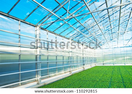 Greenhouse in Norway - stock photo
