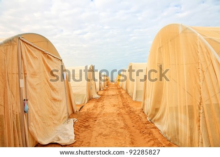 Greenhouses in desert - stock photo