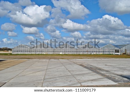 Greenhouses of glass, flowers culture in The Netherlands. - stock photo
