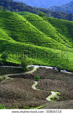 Greenish mountain landscape - stock photo