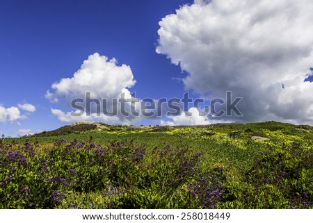 Greens Hills and Grass, with Blue Clouds and White Clouds, along the California Central Coast. - stock photo