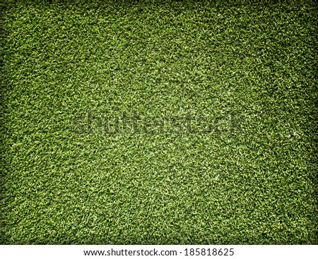 greensward football field background Green field with border. - stock photo