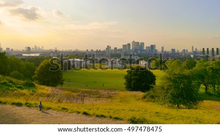 Greenwich view with lonely seagull looking London view