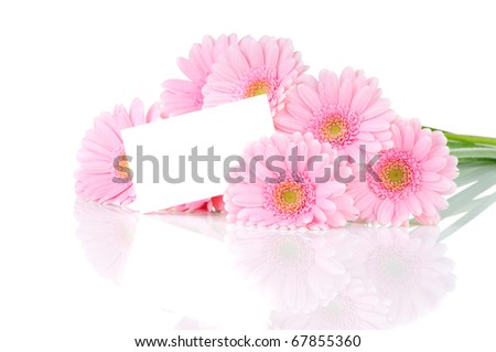 Greeting card and Gerber flowers isolated on white background - stock photo
