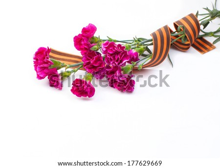 Greeting card design for military with flowers and St. George Ribbon on white background. - stock photo