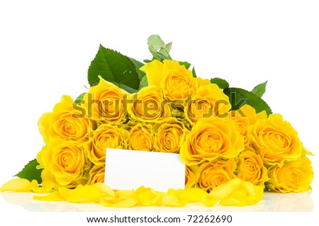 Greeting card with roses isolated on white background - stock photo