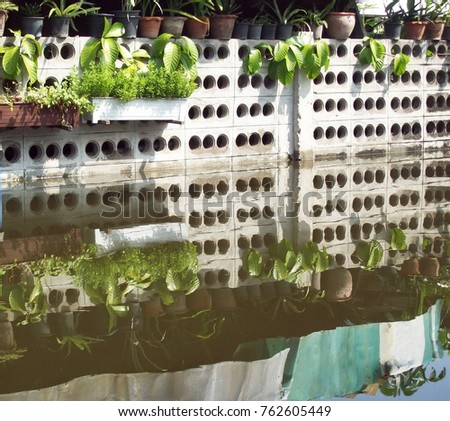 Grey brick wall with big holes in water, plant pots on top, plant hanging baskets, shadow with zinc sheet on the water