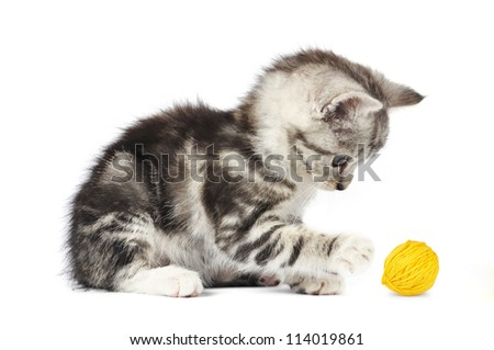 grey kitten playing with a yellow clew isolated on white - stock photo