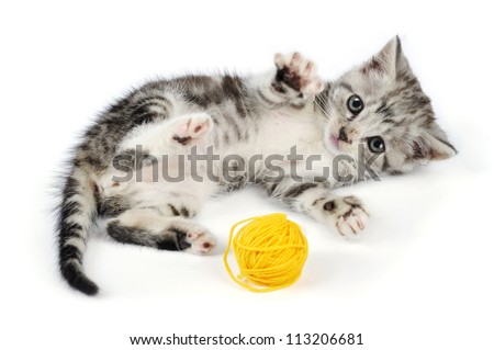 Grey kitten playing with yellow clew, isolated on white background - stock photo