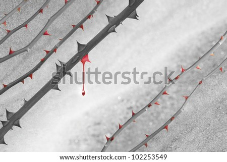 Grey scale rose lines with red thorns over a marble background. The color of one rose stem has faded, and shows a last, acrylic colored thorn, with a falling drop. - stock photo