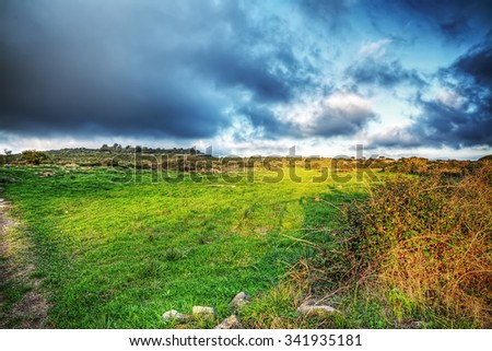 grey sky over a green meadow at sunset - stock photo