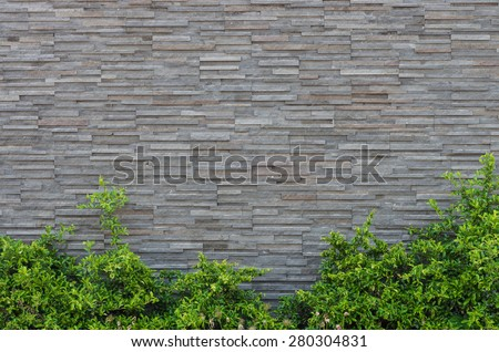 Grey stone wall with plants in the bottom