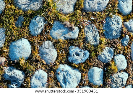 Grey stones and yellowed grass between them - textured  autumn background