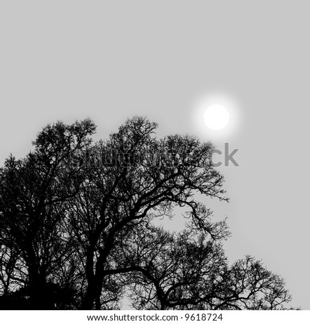 grey winter sky, sun shining through uniform cloud cover above silhouetted trees - stock photo