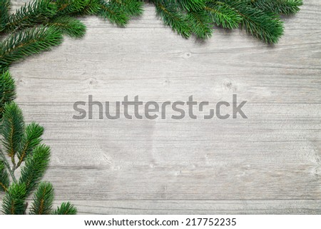 grey wood background and fir tree (christmas) - stock photo