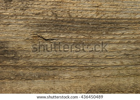 Grey wood texture. Abstract background