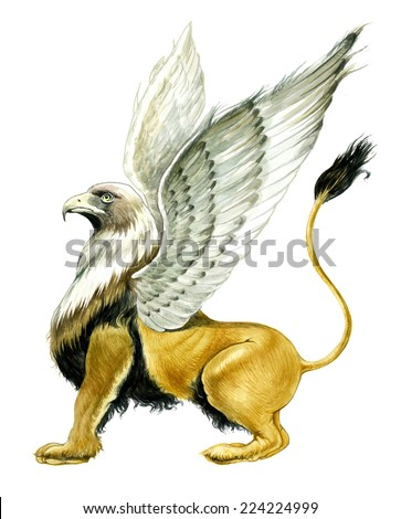 Griffin - stock photo