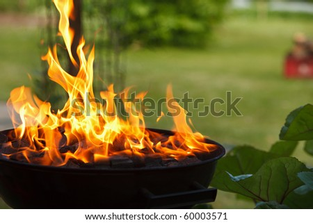 Grill in flames close-up - stock photo