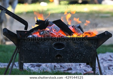 Grill. Light on the nature.  Wood fire prepared for barbecue. - stock photo