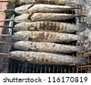 grill snake head fish with salt coated  on campfire grate - stock photo