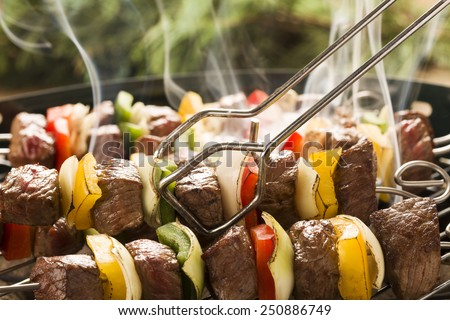 Grilled beef skewers with onions and peppers color. - stock photo